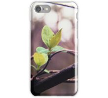First leaves of Spring iPhone Case/Skin