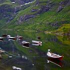 Conquest to Paradise. Visit Lofoten. Å  is one of Norway's most authentic traditional fishing villages. july 2012. by Andy Brown Sugar. by © Andrzej Goszcz,M.D. Ph.D