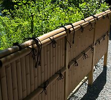 Kyoto Garden Fence by clare winslow