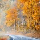 The foggy road to autumn by Delfino