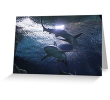 """""""Sharks""""  by Carter L. Shepard Greeting Card"""