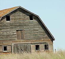 Desolate Barn by Tjfarthing
