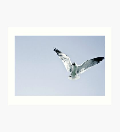 Flight. Art Print