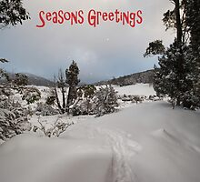 White Christmas ....... Cradle Mountain Tasmania by Lynda Heins
