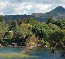 Mountains at Lake Atitlan by Marie Anne Hale