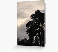 Shadow of nature at sunset Greeting Card