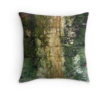 Abstract natural wall art Throw Pillow