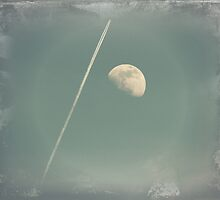 Fly me to the moon by Scott Mitchell