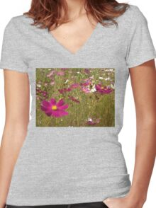 Remembering the Cosmos Women's Fitted V-Neck T-Shirt