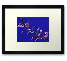 """Sea Horses""  by Carter L. Shepard Framed Print"