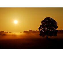 """GOLDEN LIGHT OF DAWN"" Photographic Print"