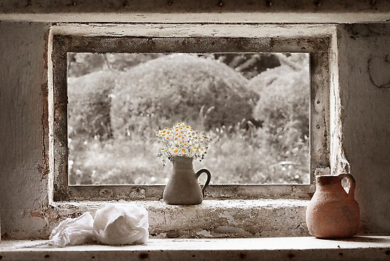 Flowers In The Window by Patricia Jacobs DPAGB LRPS BPE4