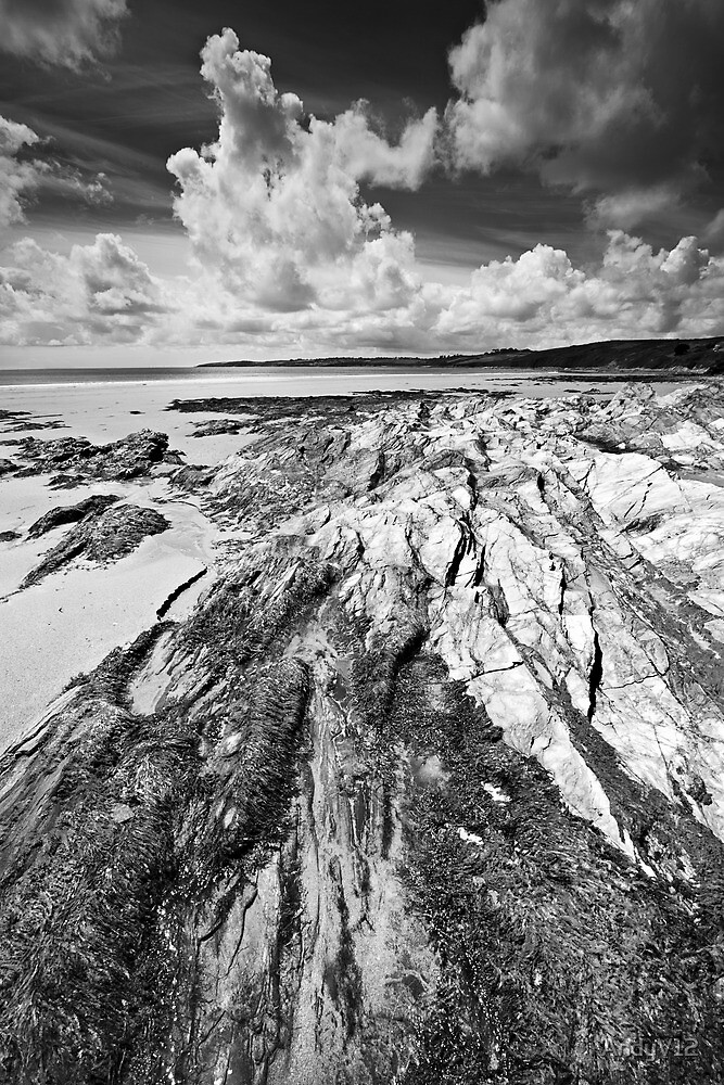 One Fine Day BW by Andy Freer