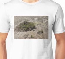 Life on Bare Rock - Junipers on a Mountaintop Unisex T-Shirt