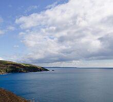 South Cornwall Coast by Simon R. Court
