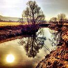 alzette river 8 by Diana Calvario