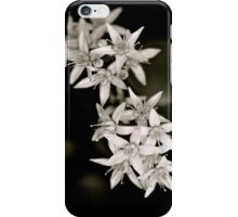 White Flowers - iPhone Case iPhone Case/Skin