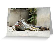 Iguana Kiss you Greeting Card