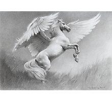 Pegasus Photographic Print
