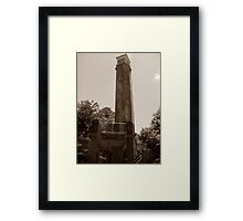 It's A Lookout! Framed Print