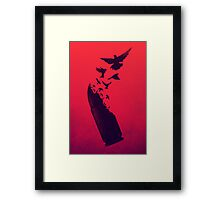 Bullet Birds Framed Print