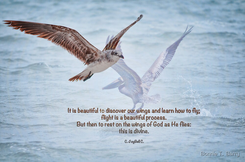 To rest on the wings of God . . . by Bonnie T.  Barry