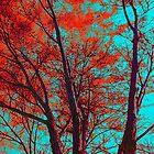 Spiritual Branches by DFLC Prints