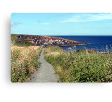 74 - CULLERNOSE POINT, NORTHUMBERLAND (D.E. 2012) Canvas Print