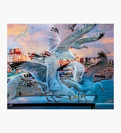 Seagulls on Brighton Pier Photographic Print