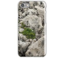 Life on Bare Rock - Weathered Limestone and Little Green Survivors iPhone Case/Skin