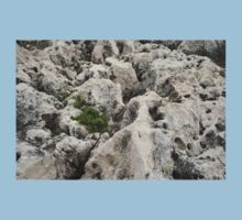 Life on Bare Rock - Weathered Limestone and Little Green Survivors Kids Tee