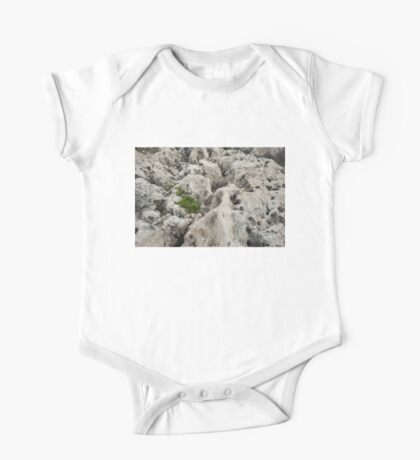 Life on Bare Rock - Weathered Limestone and Little Green Survivors One Piece - Short Sleeve