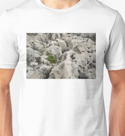 Life on Bare Rock - Weathered Limestone and Little Green Survivors Unisex T-Shirt