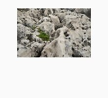 Life on Bare Rock - Weathered Limestone and Little Green Survivors T-Shirt
