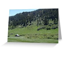 BARN IN A FIELD OF DAISIES Greeting Card