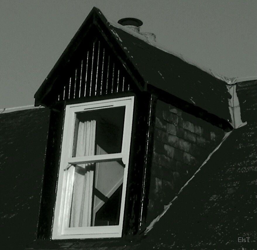 Black and White Window by ElsT