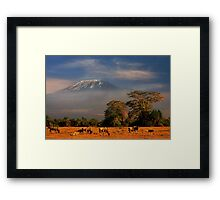 Kilimanjaro in early morning light, Amboseli National Park, Kenya, Africa. Framed Print
