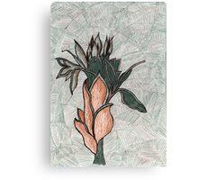 76 - PLANT DESIGN - DAVE EDWARDS - COLOURED PENCILS - 1998 Canvas Print