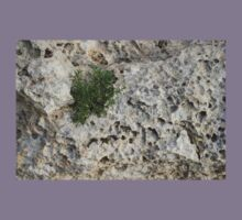 Life on Bare Rock - Pockmarked Limestone and Thyme  Kids Tee