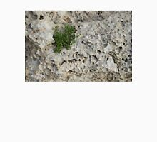 Life on Bare Rock - Pockmarked Limestone and Thyme  T-Shirt