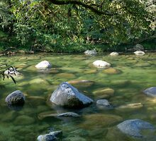 Mossman Gorge, North Queensland, Australia by Adrian Paul