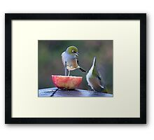 I told you to hang on tight..........! Framed Print