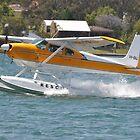 Cessna Floatplane @ Catalina Festival, Rathmines, Australia 2013 by muz2142