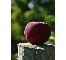 The Apple  Photographic Print