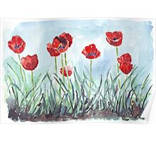Poppies mean Spring! Poster