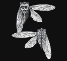 Cicada Study in Black and White Kids Clothes
