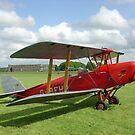 de Havilland DH 82a Tiger Moth by Ross Sharp