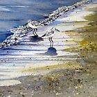 Sandpipers in the Bubbles by Laura Lea Comeau