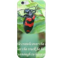 I Was Lucky Enough To Have Spotted It - Einstein Quote iPhone Case/Skin