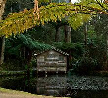 The Boat House - Alfred Nicholas Gardens by Colin  Ewington